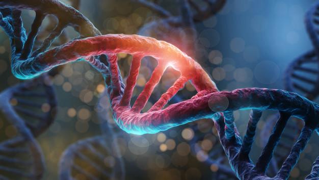 Sabendo mais sobre a Biologia Molecular